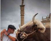 La Euskal Jira de Irun celebra su 40 aniversario